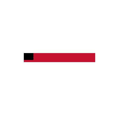 Drzwi wewnętrzne Stile-FORSYCJA-Erkado